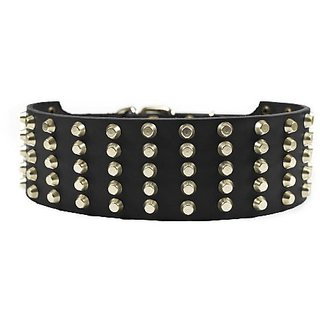 Dean and Tyler WIDE STUD, Extra Wide Leather Dog Collar with Strong Nickel Studs - Black - Size 20-Inch by 2-3/4-Inch, F