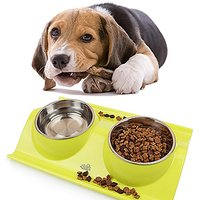 Fellow Sheep(TM)Sift-proof Double Pet Bowls,Stainless Steel Dog/Cat Bowl (yellow)