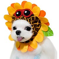 Alfie Pet By Petoga Couture - Sunflower Hat For Party Halloween Special Events Costume (for Small Dogs & Cats) - Size: L