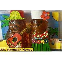 Hawaiian Rainbow Bees Hula Bears Raw Hawaiian Honey Set 4 Oz.