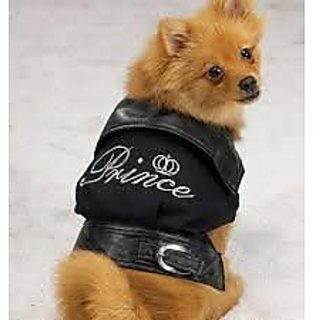 Prince Royalty Jacket