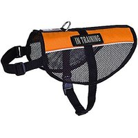 Dogline MaxAire Multi-Purpose Mesh Vest For Dogs And 2 Removable In Training Patches, Large, Orange