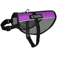 Dogline MaxAire Multi-Purpose Mesh Vest For Dogs And 2 Removable In Training Patches, Large, Purple