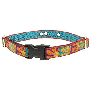 Lupine 3/4-Inch Crazy Daisy 12-17-Inch Containment Collar Strap for Small to Medium Dogs