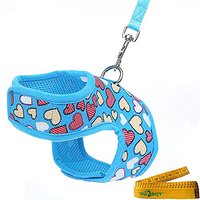 Bright Mesh Heart Printed Dog Cat Pet Vest Harness And Matching Leash Set In Blue For Dogs Cats (Small)