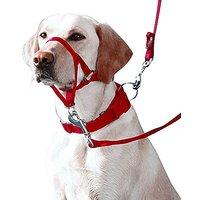 Eastop Dog Head Halter Small Dog Head Halter Large Dog Head Collar Pet Training Dog Head Collar Blue Dog Head Halter No