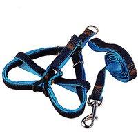 Dog Leash Harness, IGank Adjustable Dog Leash Collar, No-Pull Harness For Large/Medium/Small Dog (middle)
