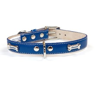 Bluemax Genuine Leather Full Grain Cow Dog Collar with Bone Stud, 3/4-Inch by 14-Inch, Royal