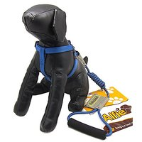 Alfie Pet By Petoga Couture - Paxton Premium Performance Adjustable Harness And Leash Set - Color: Blue, Size: S