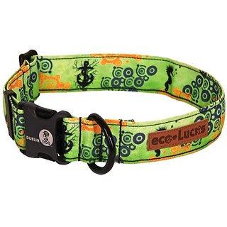 Dublin Dog Co Eco Lucks Hampton Dog Collar, Atlantis, 10 by 15-Inch, Small