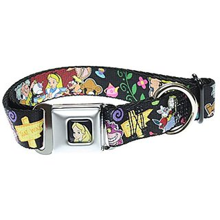 Buckle Down Dog Collar Alices Encounters in Wonderland -Medium 11-17