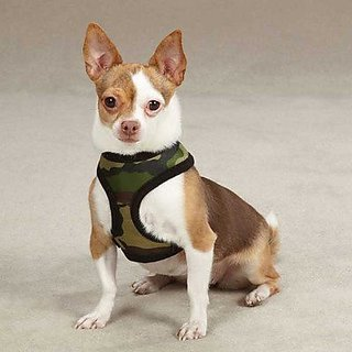 Casual Canine Polyester Camo Dog Harness, Medium, Blue