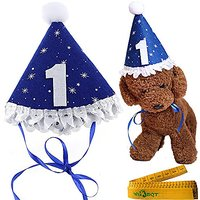 Blue Pet Dog Cat Birthday Holiday Party Hat Headwear Costume Accessory With A White Ball And Lace For Small Medium Dogs