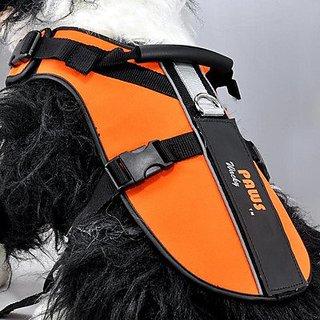 Wacky Paws Pet Sport Travel Harness, Small, Orange