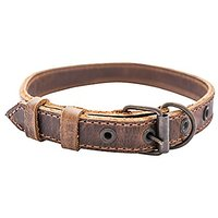 Slim Leather Dog Collar For Small Size Dog (10 To 12.5 Inches) Handmade By Hide & Drink :: Bourbon Brown
