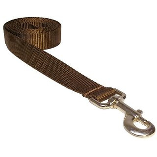 Sassy Dog Wear 6-Feet Brown Nylon Webbing Dog Leash, Medium