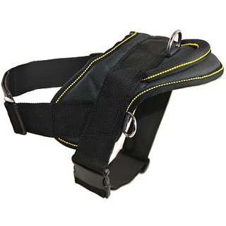 Dean and Tyler DT Dog Harness, Black With Yellow Trim, Large - Fits Girth Size: 32-Inch to 42-Inch