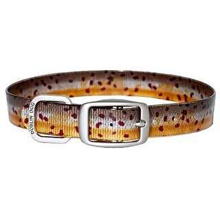 Brown Trout All Style-No Stink KOA Collar by Dublin Dog