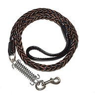 Remeel Real Leather Dog Leash With Buffer Spring For Medium Large Dogs