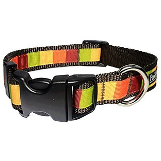 Paw Paws USA Pumpkin Block Dog Collar, Medium, Multicolored