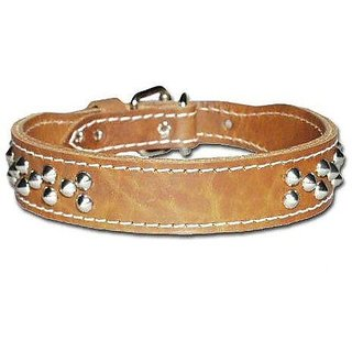 Leather Brothers 129-BK23 2 x 23-Inch Cone Studded Leather Tapered Dog Collar, X-Large, Black