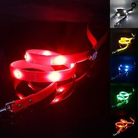 Pawow USB Rechargeable LED Dog Leash - Keep Your Dog Visible & Safe - TPU Light-Up Night Safety Leash For Large Dogs - L