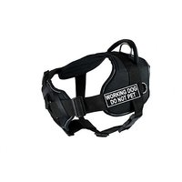 Dean & Tyler D&T FUN-CH WRKDNP RT-L Fun Dog Harness With Padded Chest Piece, Working Dog Do Not Pet, Large, Fits Girth 8