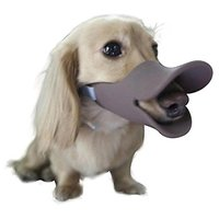 Lovely Summer Anti Bite Duck Mouth Shape Dog Mouth Covers Anti-called Muzzle Masks Pet Mouth Set Bite-proof Coffee M