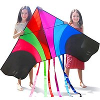 Tomi Kite - Huge Rainbow Kite That Is Ideal For Kids And Adults - Easy To Launch In Stiff Wind Or Soft Breeze - 60 Inche