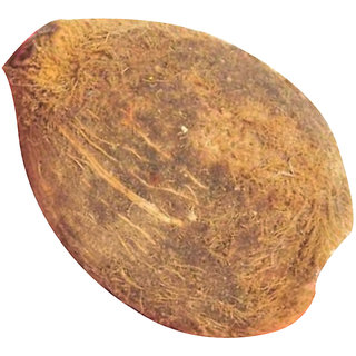 Ekakshi Nariyal One Eye Coconut