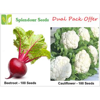 Beetroot Cauliflower Vegetable seeds dual offer