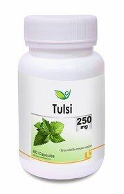 Biotrex Tulsi Herbal Antioxidant Supplement - 250mg Controls Blood Glucose