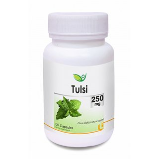 Biotrex Tulsi Herbal Antioxidant Supplement - 250mg  Controls blood glucose levels(60 Capsules)