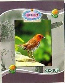 Shivkrupa Genius Notebook