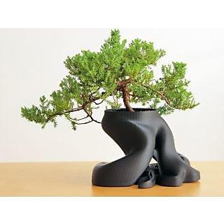 Decorative Eye Catching Root Design Plant Pot/Vase Black 3D Printed