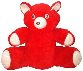 Soft Big RED Teddy