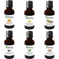 Combo Set Of Sweet Orange Oil, Ylang-Ylang Oil, Clary Sage Oil, Lavender Oil, Jojoba Oil And Sesame Oil (Each 15ML)