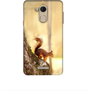 Casotec Squirrel Design 3D Printed Hard Back Case Cover for Coolpad Note 5