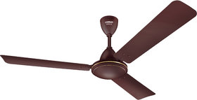 Eveready 1200 VANILO 70W Ceiling Fan Brown