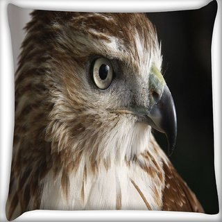 Snoogg Falcon Animal Digitally Printed Cushion Cover Pillow 16 x 16 Inch