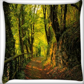 Snoogg Forest Way Digitally Printed Cushion Cover Pillow 16 x 16 Inch
