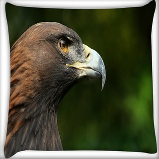 Snoogg Eagle Face Digitally Printed Cushion Cover Pillow 16 x 16 Inch