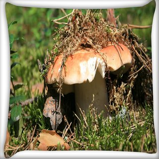 Snoogg Broken Mushroom Digitally Printed Cushion Cover Pillow 20 x 20 Inch