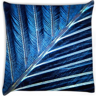 Snoogg  feather  Digitally Printed Cushion Cover Pillow 16 x 16 Inch