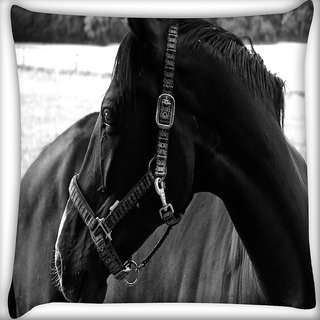 Snoogg Black Horse Digitally Printed Cushion Cover Pillow 16 x 16 Inch