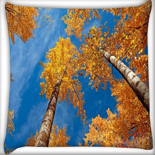 Snoogg Tall Trees Digitally Printed Cushion Cover Pillow 16 x 16 Inch