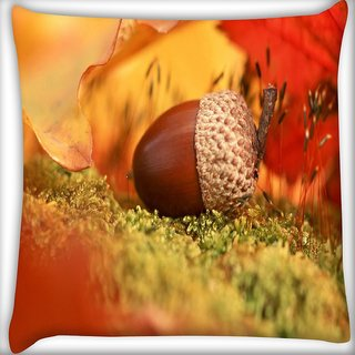 Snoogg Small Fruit Digitally Printed Cushion Cover Pillow 16 x 16 Inch
