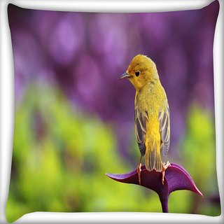 Snoogg Small Cute Bird Digitally Printed Cushion Cover Pillow 16 x 16 Inch