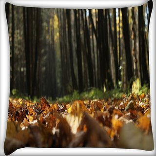 Snoogg Many Trees In Forest Digitally Printed Cushion Cover Pillow 16 x 16 Inch