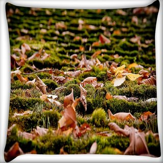 Snoogg Dried Leaves On The Ground Digitally Printed Cushion Cover Pillow 16 x 16 Inch